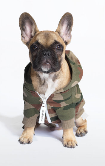 dog_style_onesie_camo_green_352x557